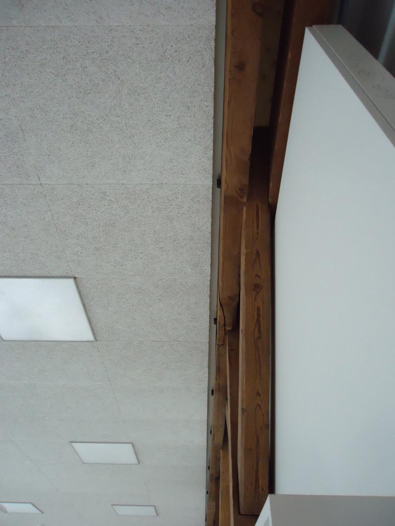 Innovative Holzpaneele Deckenmontage: Esszimmer